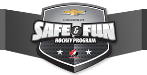Safe and Fun Hockey 2013